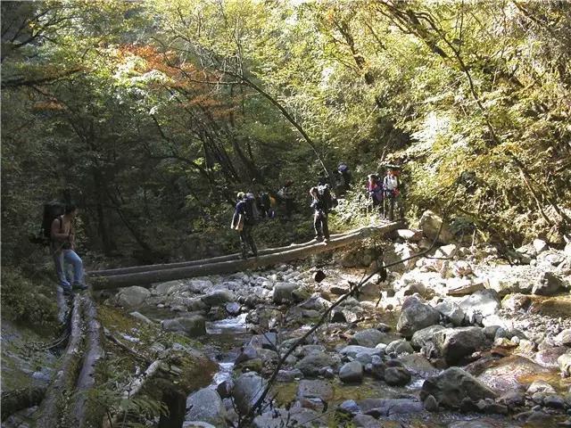 反复跨越溪流,跨过独木桥、溪流、石块等地段  摄影/李晖